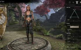 TESO screen for MMO Games with Character Customization Category