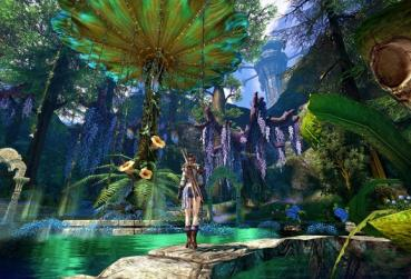 Cover for Free to Play MMORPG for PC Category